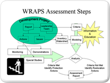 WRAPS Assessment Steps